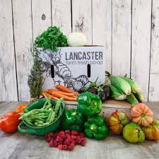 CSA - Certified Organic Lancaster Farm Fresh Co-op LG