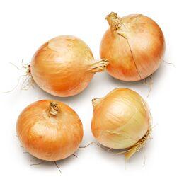 Organic Sweet Fresh Onions