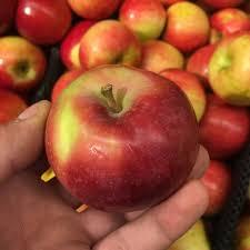IPM McIntosh Apples