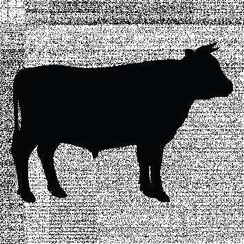 Whole Cow (deposit)