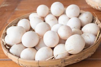 Duck Eggs- Dozen