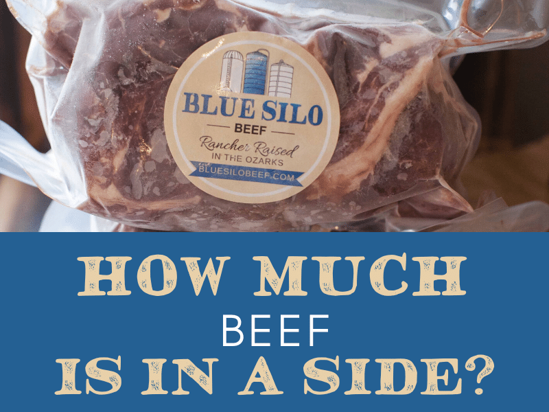 How Much Beef is in a Side?