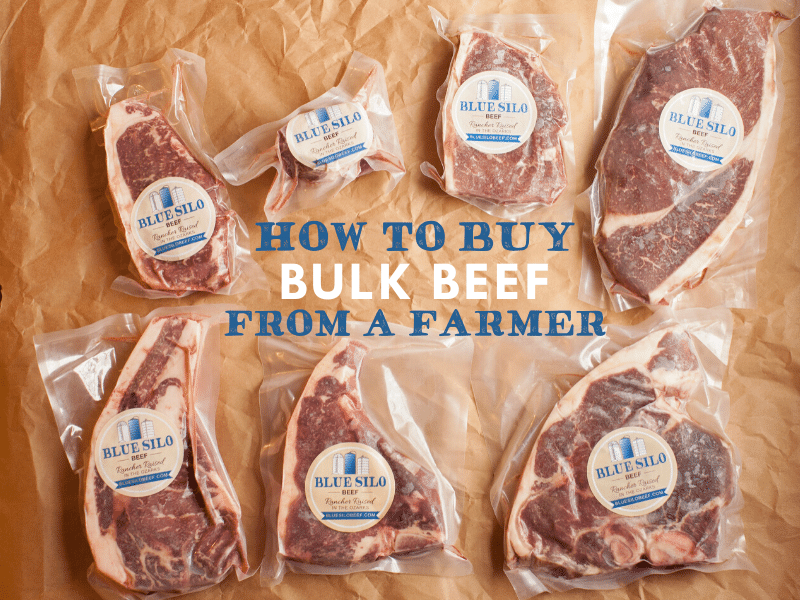 How to Buy Bulk Beef from a Farmer
