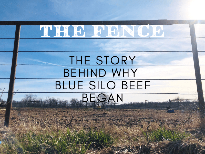The Fence: The Story Behind Why Blue Silo Beef Began