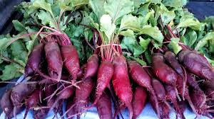Cylindra Beets (Loose)