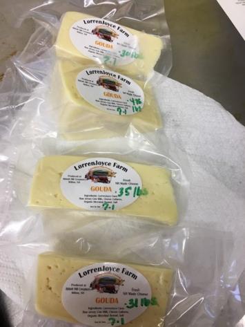 Raw Milk Gouda Cheese