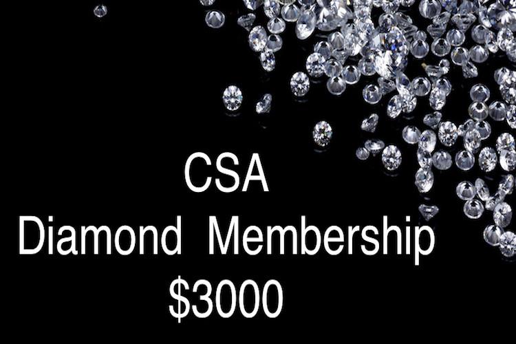 CSA  Diamond