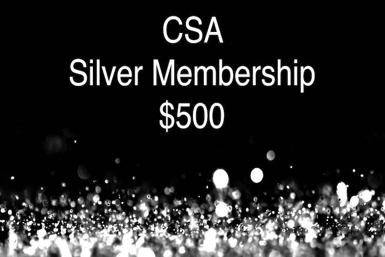 CSA Silver