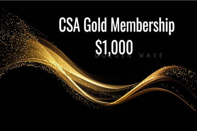 CSA Gold