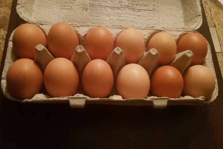 Chicken Eggs - 15 dz Case of Flats