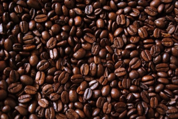 Arabica Coffee - from India