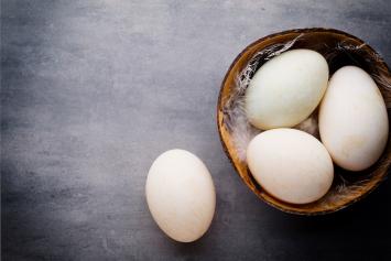 Duck Eggs - Case of Cartons 15dz