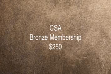 CSA Bronze