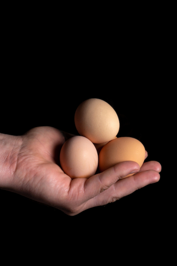 2021-22 Winter Egg Share 3dz per week Pickup From The Heights