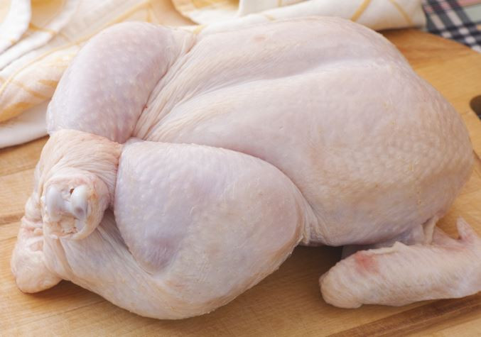 Broiler Chicken - whole