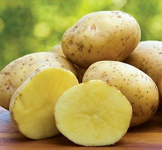 Potatoes (Yukon Gold) - 10lb bag