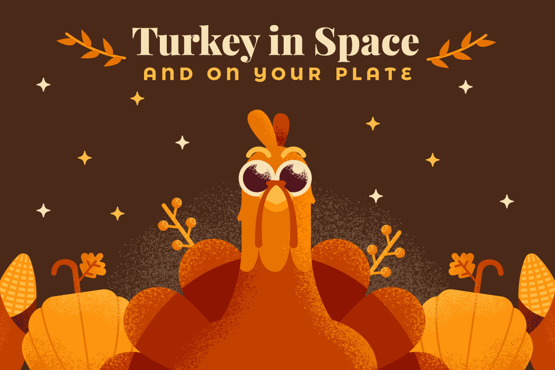 Turkey In Space and On Your Plate - Why It Matters Where You Buy Your Thanksgiving Turkey