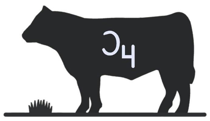 Whole-Logo.jpg