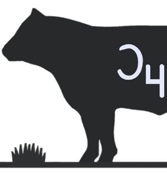 Half-Beef-Pic.png