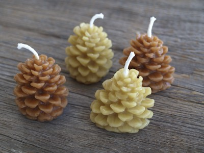 Pinecone candles - earth
