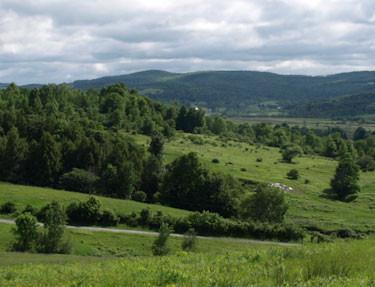 Cairncrest Farm pastures