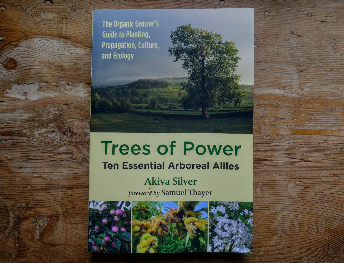 Trees of Power Book Review