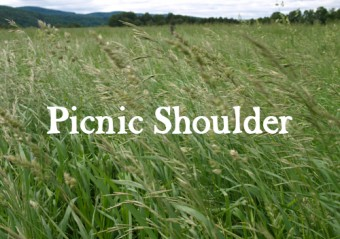 Picnic Shoulder