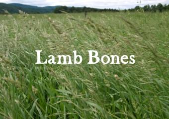 Lamb Bones