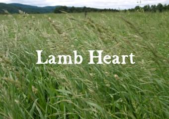 Lamb Heart