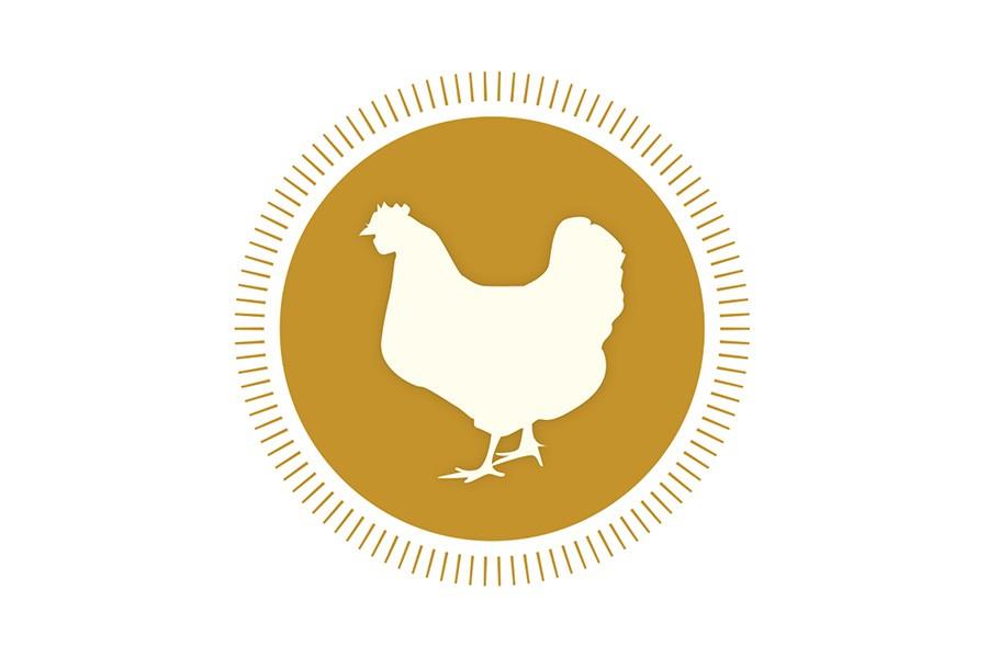 Chicken, Cornish Cross