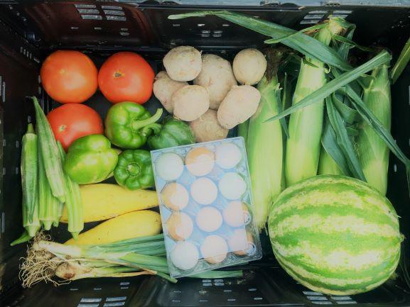 Vegetable Shares