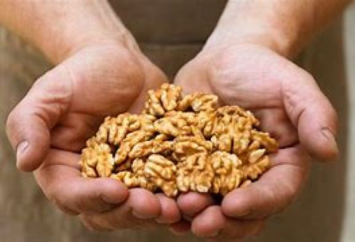 English Walnuts: organic, and soaked