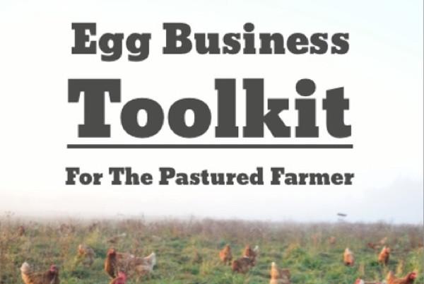egg-toolkit.jpg