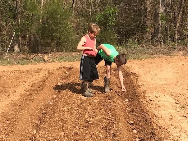 Creekside - Lucas & Eli's Produce