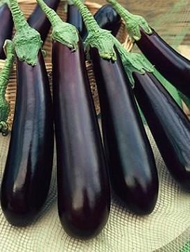 Eggplant - Rowland Row Farms