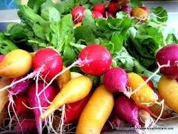 Mixed Radishes - Fresh Picked - Rowland Row Farms