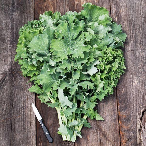 Siberian Kale - Rowland Row Farms