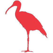 ibis_logo.png
