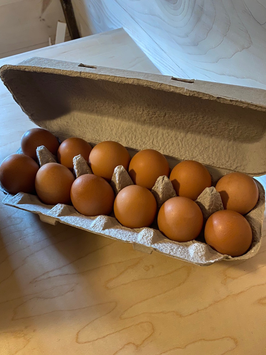 Eggs- Pasture Raised