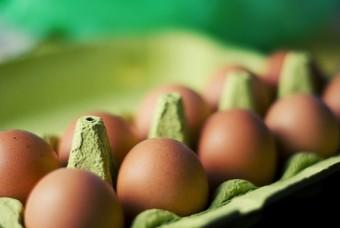 1 Dozen Egg Share