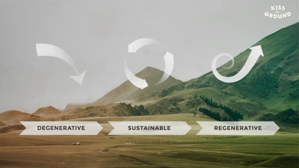 What is Regenerative Ag anyways? Soil Health Principle 1