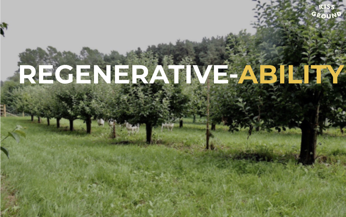 What is Regenerative Ag anyways? Soil Health Principle 2
