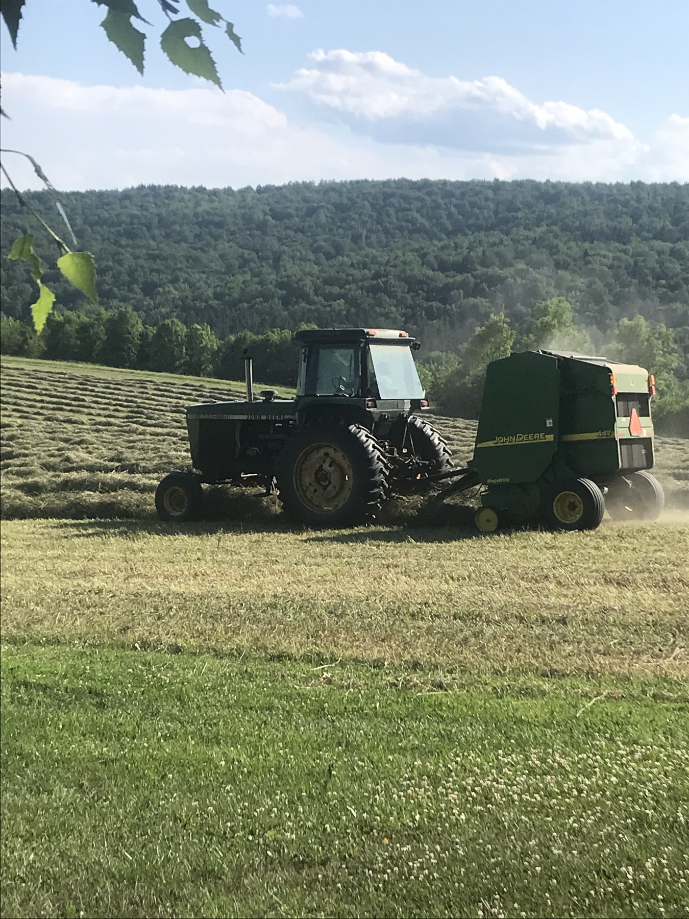Hay & Rotating Critters