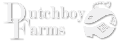 Dutchboy Farms Logo