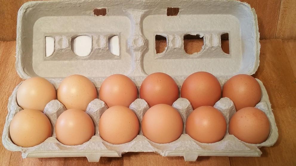15 Dozen Bundle Large Brown Eggs