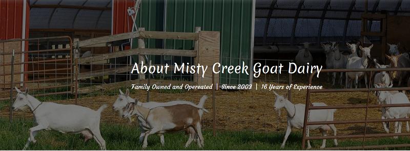 Misty Creek Goat Dairy