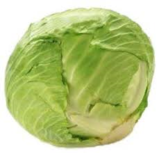 Green Cabbage (Reg. Size)
