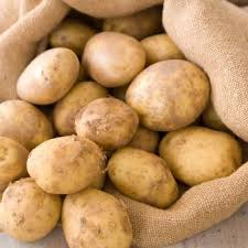 5lb - Eva Potatoes