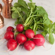 Red Radishes (Bunch)