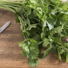 Fresh Herbs (Celery Leaves)